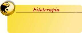 Curso de Fitoterapia en Madrid